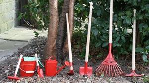 Afbeelding voor categorie Tuinieren